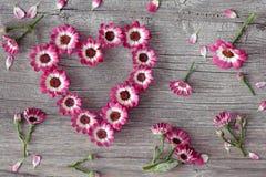 Het hart van de bloem Stock Foto