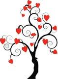 Het hart van de boom Stock Foto's