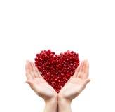 Het hart van de granaatappel in handen stock foto
