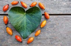 Het hart van de herfst vector illustratie die op zwarte achtergrond wordt geïsoleerd Royalty-vrije Stock Foto