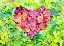 Het hart van de herfst vector illustratie die op zwarte achtergrond wordt geïsoleerd Royalty-vrije Stock Foto's