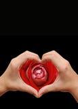 Het hart van de minnaar Stock Afbeelding