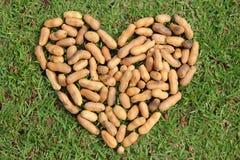 Het hart van de noten Royalty-vrije Stock Afbeeldingen