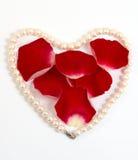 Het hart van de parel met rode bloemblaadjes Stock Foto