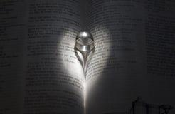 Het hart van de ring stock foto