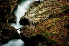 Het hart van de rivier stock foto