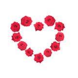 Het hart van de valentijnskaart van rode rozen wordt gemaakt die. Royalty-vrije Stock Afbeelding