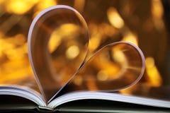 Het hart van het boek Royalty-vrije Stock Fotografie