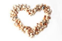 Het hart van het frame van overzeese shells Stock Fotografie