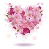 Het hart van het kersenbloemblaadje op het wit Royalty-vrije Stock Afbeelding