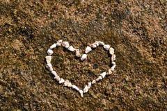 Het hart van het koraal Royalty-vrije Stock Fotografie