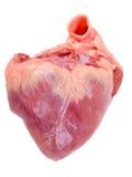 Het hart van het varken. royalty-vrije stock foto's
