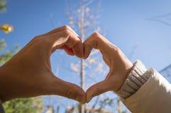 Het hart van liefdehanden Royalty-vrije Stock Fotografie