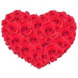 Het hart van rozen, nam toe, geïsoleerd op wit Royalty-vrije Stock Afbeeldingen