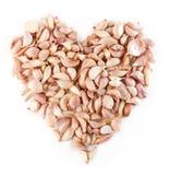 Het hartsymbool van knoflookkruidnagels Royalty-vrije Stock Afbeeldingen