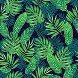 Het Hawaiiaanse Naadloze Patroon van Aloha Royalty-vrije Stock Afbeelding