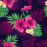 Het Hawaiiaanse Naadloze Patroon van Aloha Royalty-vrije Stock Foto's