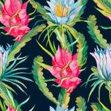 Het Hawaiiaanse Naadloze Patroon van Aloha Exotische bladeren en bloemen Vector Dragonfruit, pitaya, pitahaya Bloemenpitaya Royalty-vrije Stock Fotografie