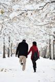 Het hebben van pret in de winterscène stock fotografie