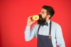 Het hebben van snacks Dieet en gezond voedsel Baker eet doughnut Chef-kokmens in koffie calorie Voel honger Gebaarde bakker gebaa stock afbeelding
