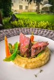 Het heerlijke hertevleeslapje vlees met aardappels stampt en groenten op witte plaat, productfotografie voor exclusief restaurant royalty-vrije stock afbeelding