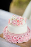Het heerlijke smakelijke detail van de huwelijkscake Stock Afbeeldingen