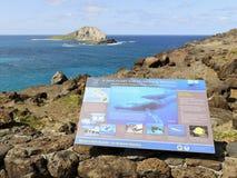 Het Heiligdom van de Walvis van de Gebochelde van Makapuu stock foto's