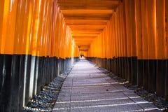 Het heiligdom van Fushimiinari Taisha. Kyoto. Japan Royalty-vrije Stock Foto