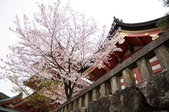 Het Heiligdom van Kiyomizu in Kyoto, Japan Stock Foto