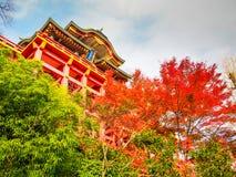Het heiligdom van Yutokuinari in Saga stock foto