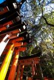Het Heiligdomplaats van Fushimiinari voor duizenden van Senbon Torii toriipoorten Kyoto Osaka Japan stock afbeeldingen