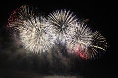 Het heldere kleurrijke vuurwerk van de vuurwerknacht Stock Afbeelding