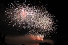 Het heldere kleurrijke vuurwerk van de vuurwerknacht Stock Afbeeldingen