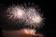 Het heldere kleurrijke vuurwerk van de vuurwerknacht Royalty-vrije Stock Afbeeldingen