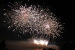 Het heldere kleurrijke vuurwerk van de vuurwerknacht Stock Fotografie