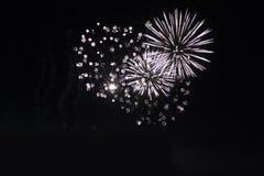 Het heldere kleurrijke vuurwerk van de vuurwerknacht Stock Foto's