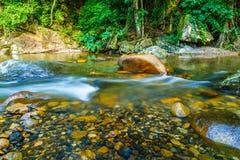 Het heldere water stromen stock fotografie