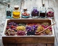 Het helen van kruiden in houten doos en flessen tint royalty-vrije stock afbeeldingen