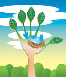Het helpen van de Ecologie van de Hand Royalty-vrije Stock Afbeelding