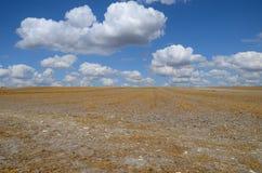 Het hemelhoogtepunt van wolken over stoppelveld Stock Fotografie
