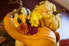 Het herfstbelangrijkste voorwerp van de de vakantiebloem van de oogstpompoen Stock Afbeeldingen