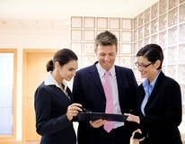 Het herzien van Businesspeople documenten royalty-vrije stock afbeeldingen