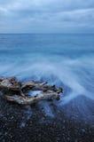 Het het nachtoverzees en hout Royalty-vrije Stock Fotografie