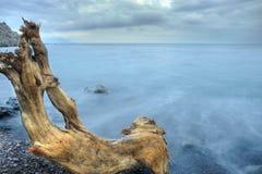 Het het nachtoverzees en hout Stock Afbeelding