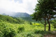 Het het Noorden Koreaanse landschap Royalty-vrije Stock Afbeeldingen