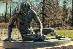 Het het Sterven Gaul standbeeld in Catherine Park in Tsarskoye Selo Stock Foto's