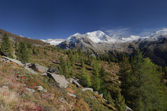 Het Hochgall-hoogtepunt van sneeuw bij daling, van Reintal, Italiaanse Alpen Stock Foto's