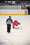 Het Hockey van de Slee van het ijs Royalty-vrije Stock Foto's