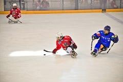 Het Hockey van de Slee van het ijs Stock Foto