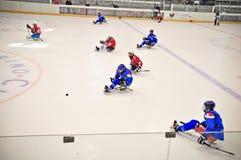 Het Hockey van de Slee van het ijs Stock Foto's